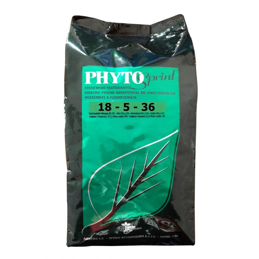 Fertilizant foliar Phyto Sprint 18.5.36 2Kg