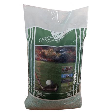Green Top 5Kg - fertilizant gazon