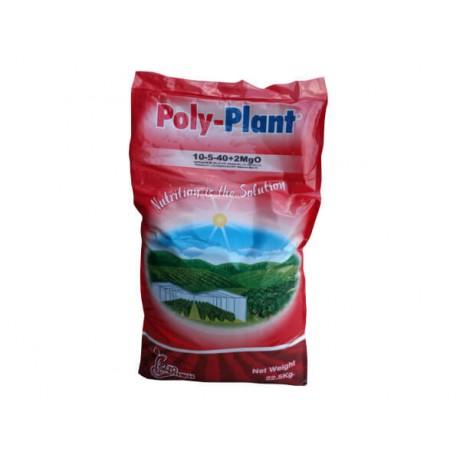 Poly Plant 10.5.40 +ME 22.5Kg