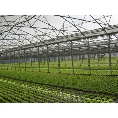 Folie solar Kritifil 3296, 10.5m * 150 microni * 80m